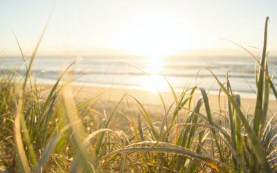 Houd de zomerse energie vast door nu een fundament te leggen voor de winter.